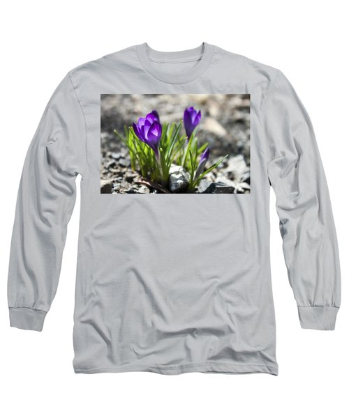Long Sleeve T-Shirt featuring the photograph Blooming Crocus #1 by Jeff Severson