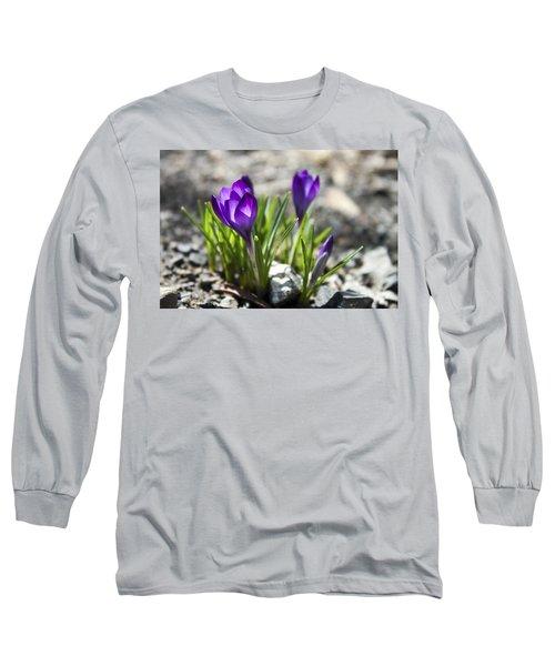 Blooming Crocus #1 Long Sleeve T-Shirt