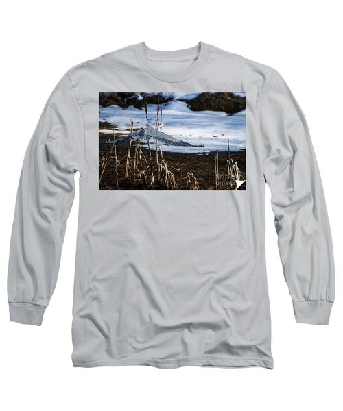 Long Sleeve T-Shirt featuring the photograph Blue Heron by Jim  Hatch
