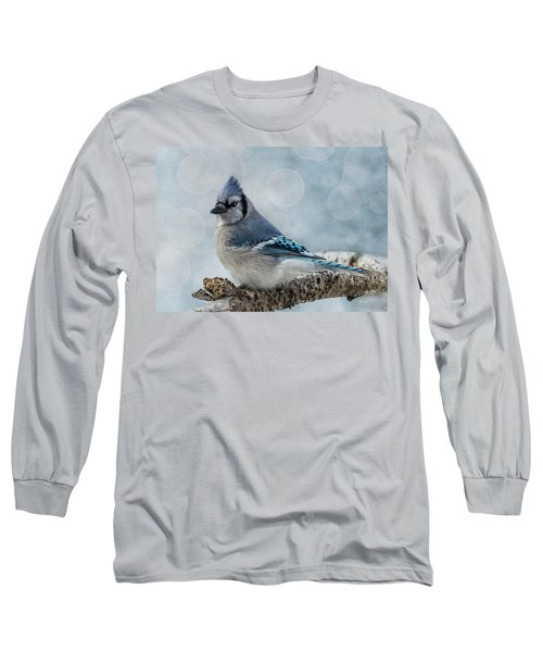 Blue Jay Perch Long Sleeve T-Shirt