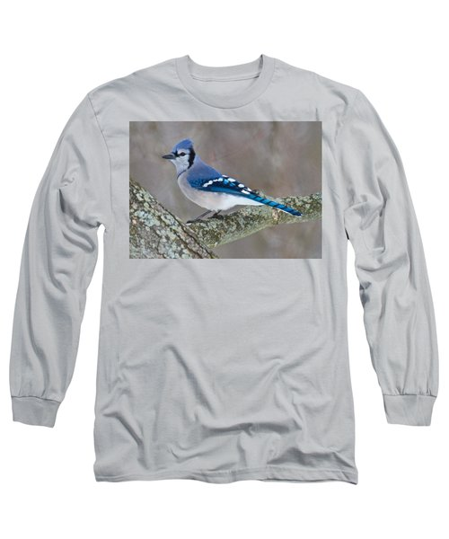 Bluejay 1357 Long Sleeve T-Shirt by Michael Peychich