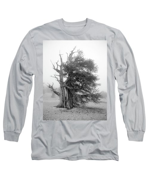 Bristlecone Mist Long Sleeve T-Shirt