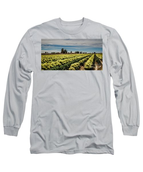 Broccoli Seed Long Sleeve T-Shirt by Robert Bales