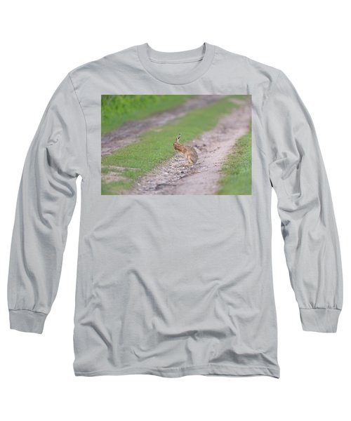 Brown Hare Cleaning Long Sleeve T-Shirt