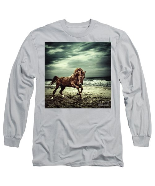 Brown Horse Galloping On The Coastline Long Sleeve T-Shirt