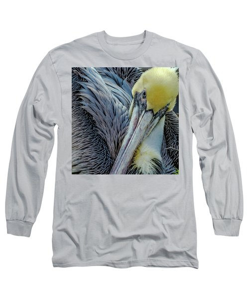 Long Sleeve T-Shirt featuring the photograph Brown Pelican by Bill Gallagher