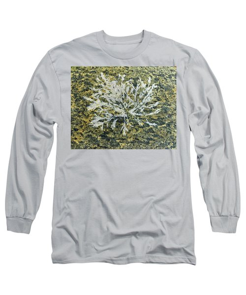 Bryozoan Life Long Sleeve T-Shirt