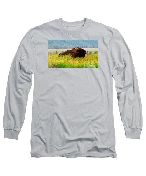 Buffalo Wings Long Sleeve T-Shirt
