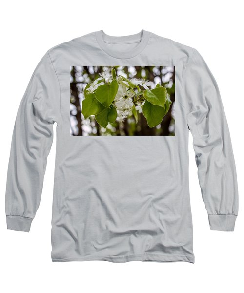 Callery Pear Tree Bloom Long Sleeve T-Shirt
