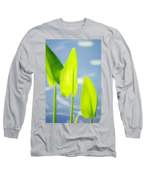 Calm Greens Long Sleeve T-Shirt