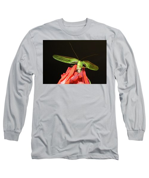Can You Hear Me Now By Karen Wiles Long Sleeve T-Shirt