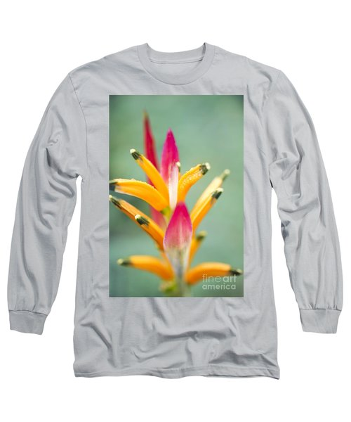 Long Sleeve T-Shirt featuring the photograph Candy Colours - Heliconia Tropical Flower by Sharon Mau
