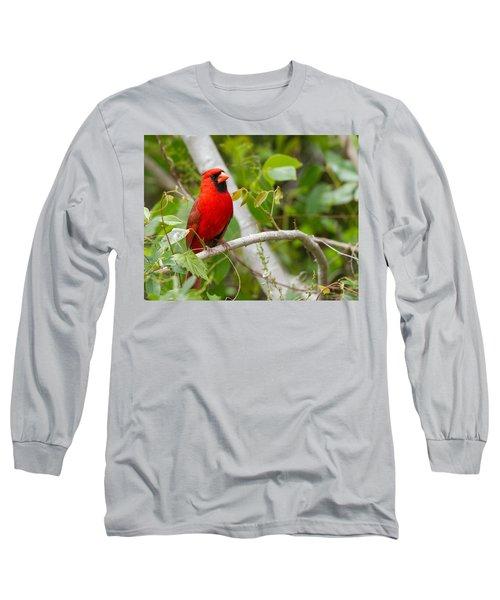 Cardinal 147 Long Sleeve T-Shirt