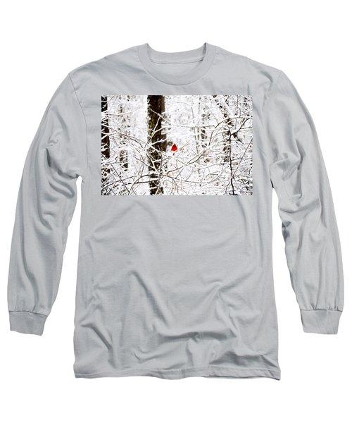 Cardinal In The Snow Long Sleeve T-Shirt