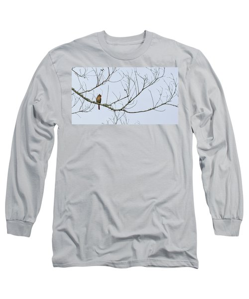 Long Sleeve T-Shirt featuring the photograph Cardinal In Tree by Richard Rizzo