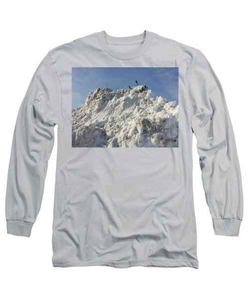 Cart Art No. 31 Long Sleeve T-Shirt