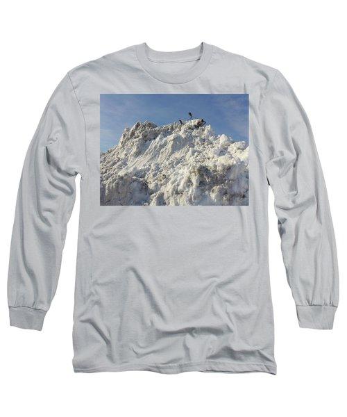 Cart Art No. 31 Long Sleeve T-Shirt