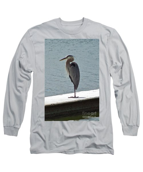 Long Sleeve T-Shirt featuring the photograph Catching Some Morning Rays by Carol  Bradley