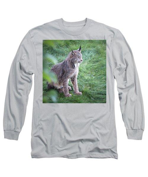 Champion Mama Lynx Long Sleeve T-Shirt