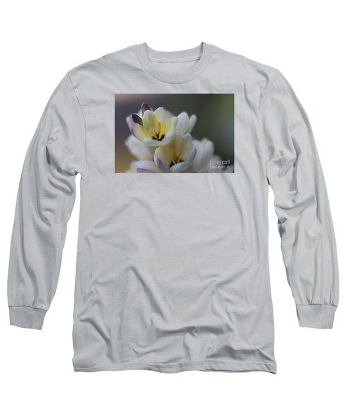 Close-up Of White Freesia Long Sleeve T-Shirt