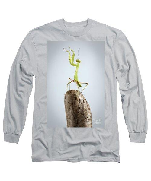 Closeup Green Praying Mantis On Stick Long Sleeve T-Shirt