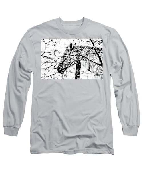 Cold Horse Long Sleeve T-Shirt