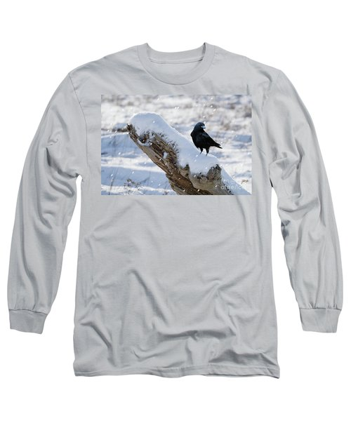 Cold Winter Long Sleeve T-Shirt