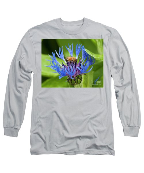 Collecting Pollen Long Sleeve T-Shirt