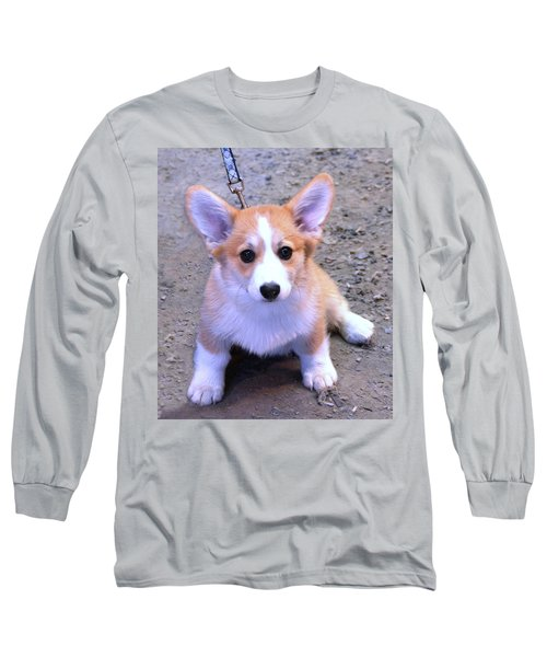 Corgi Puppy Long Sleeve T-Shirt