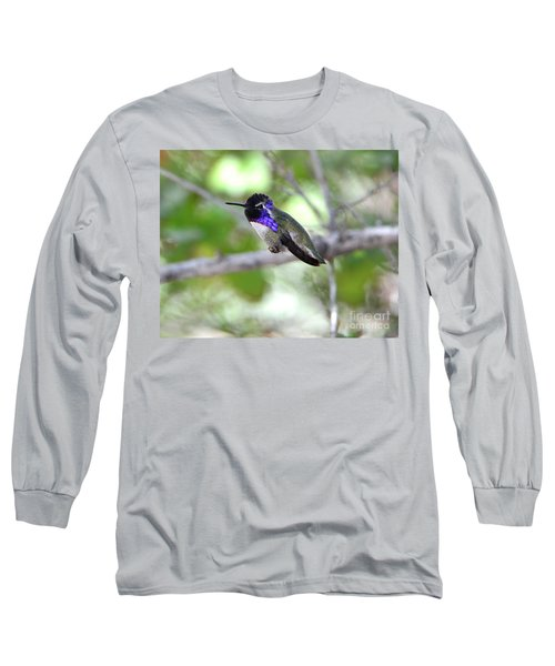 Costa's Hummingbird Long Sleeve T-Shirt