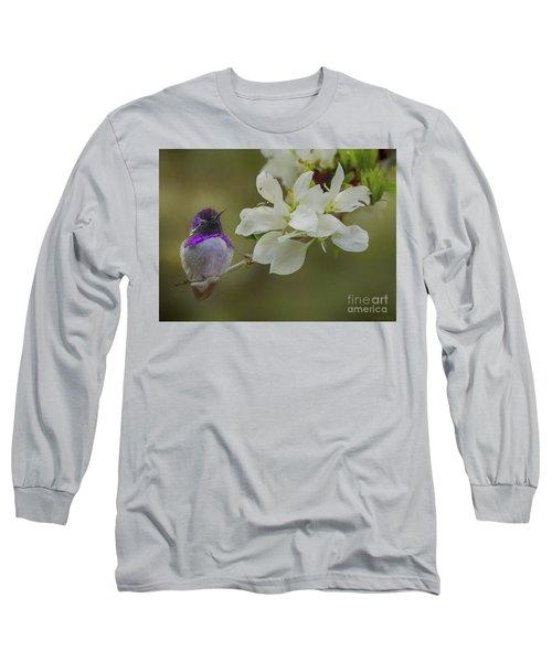 Costas Hummingbird On An Anacacho Orchid Branch Long Sleeve T-Shirt