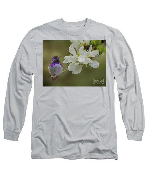 Costas Hummingbird On An Anacacho Orchid Branch Long Sleeve T-Shirt