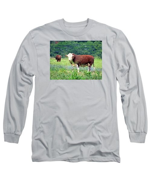 Cow Today Long Sleeve T-Shirt by Angela Annas