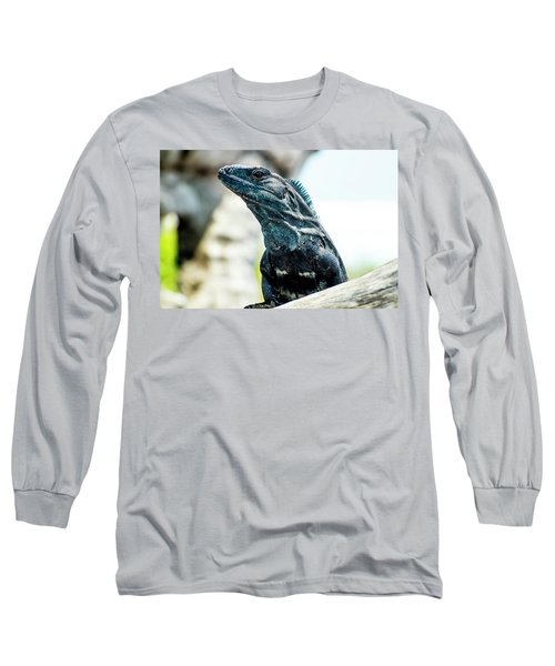Long Sleeve T-Shirt featuring the photograph Ctenosaura by David Morefield