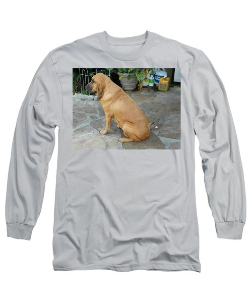 Cujo Sitting Around Long Sleeve T-Shirt by Val Oconnor