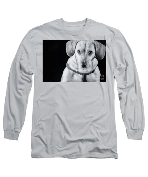 Dachshund Lab Mix Long Sleeve T-Shirt