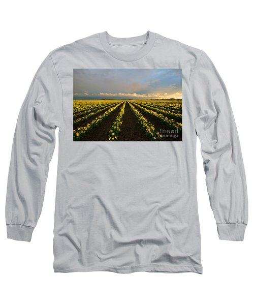Long Sleeve T-Shirt featuring the photograph Daffodil Storm by Mike Dawson