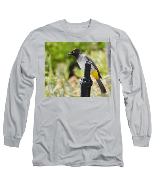Long Sleeve T-Shirt featuring the photograph Dark-capped Bulbul by Betty-Anne McDonald