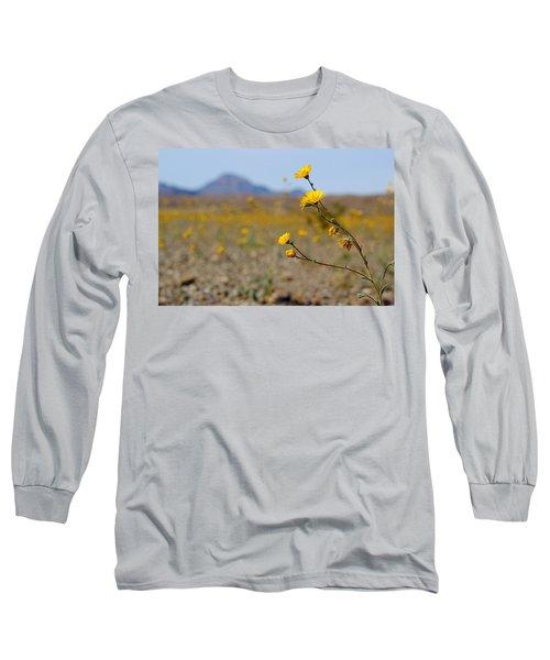 Death Valley Superbloom 501 Long Sleeve T-Shirt by Daniel Woodrum