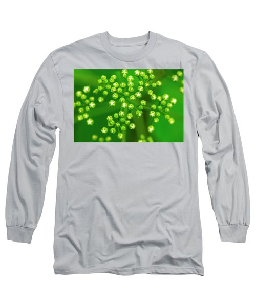 Deliciously Graphic Long Sleeve T-Shirt