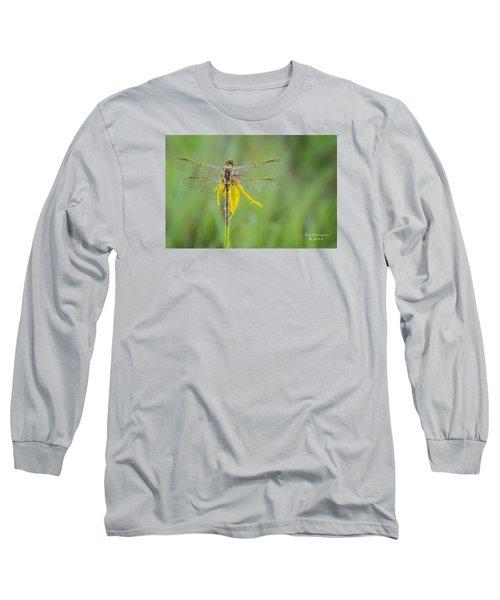 Dewy Dragon Long Sleeve T-Shirt