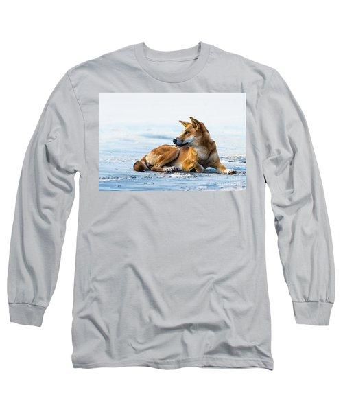 Dingo On Fraser Island Beach Long Sleeve T-Shirt