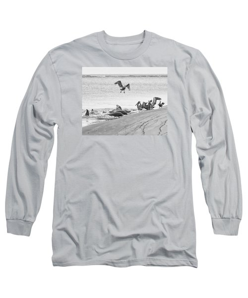 Long Sleeve T-Shirt featuring the photograph Dolphin And Pelican Party by Patricia Schaefer