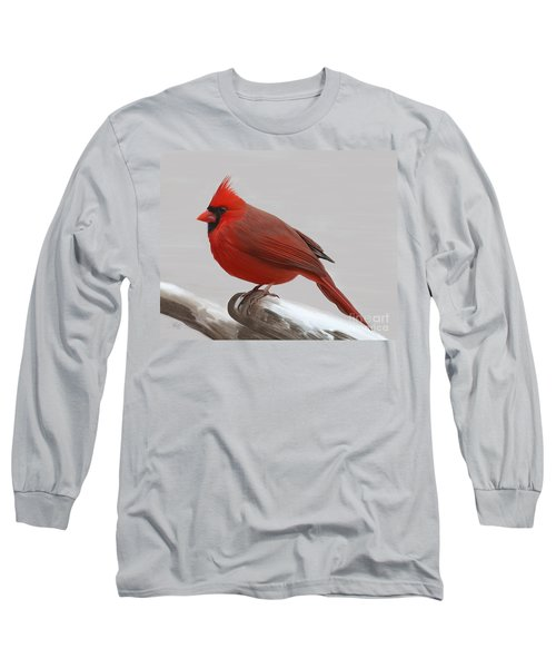 Long Sleeve T-Shirt featuring the painting Downy Winter Male by Rand Herron