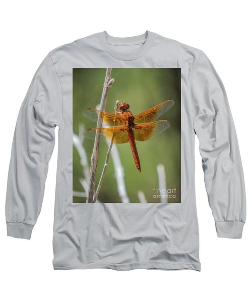 Dragonfly 10 Long Sleeve T-Shirt