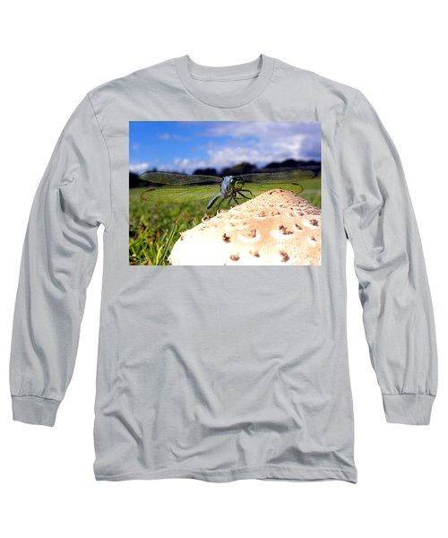 Dragonfly On A Mushroom Long Sleeve T-Shirt by Chris Mercer