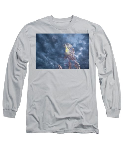 Dreaming Of The Sky Long Sleeve T-Shirt