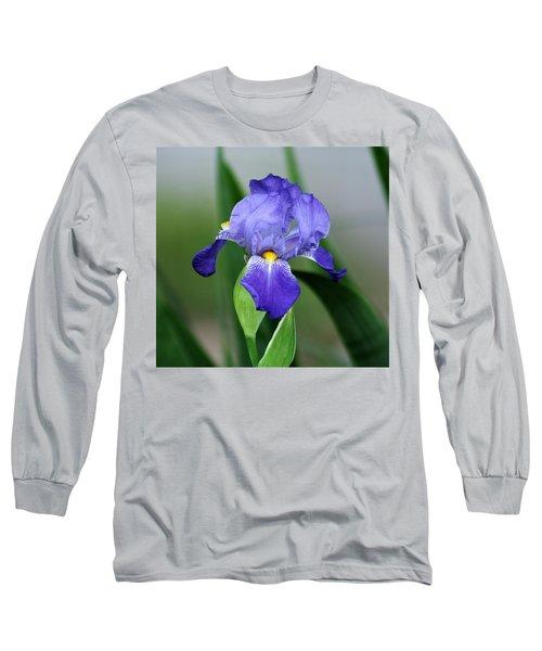 Dwarf Iris 9834_2 Long Sleeve T-Shirt
