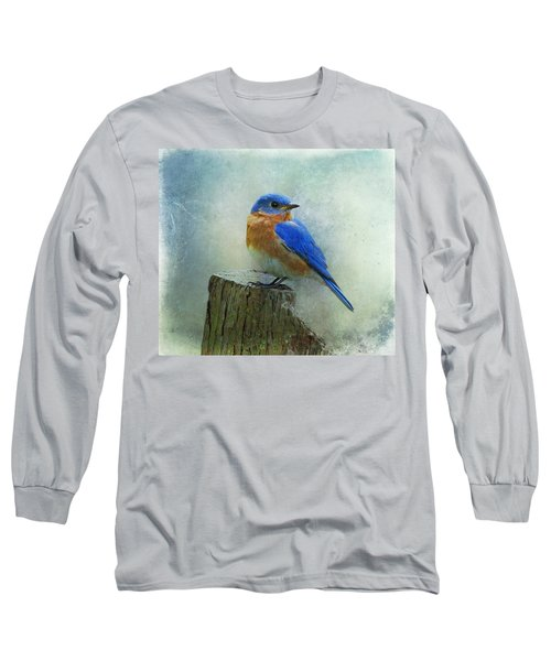 Eastern Bluebird II Long Sleeve T-Shirt by Sandy Keeton