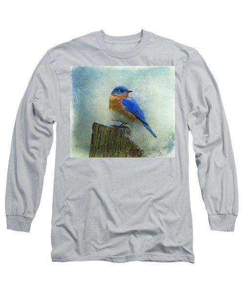Eastern Bluebird II Long Sleeve T-Shirt